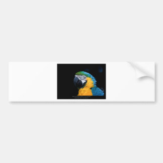 Ara ararauna - Blue-and-yellow Macaw  01 Bumper Sticker
