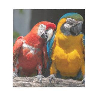 ara ararauna parrot on its perch notepad