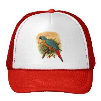 Ara Erythrura Trucker Hat