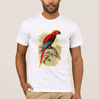 Ara Gossei Basic American Apparel T-Shirt
