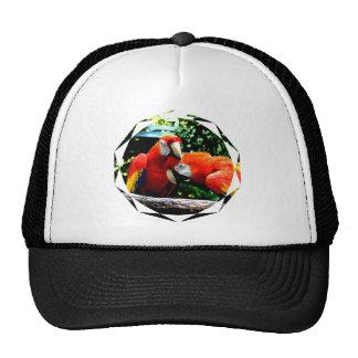 Ara macao kiss love joy trucker hat