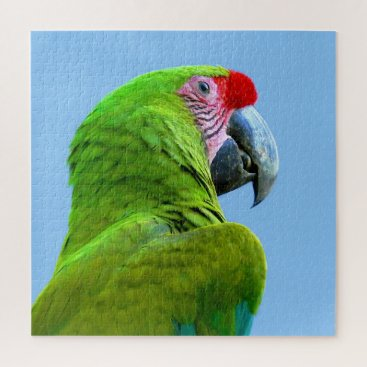 Ara Militaris Green Parrot Jigsaw Puzzle
