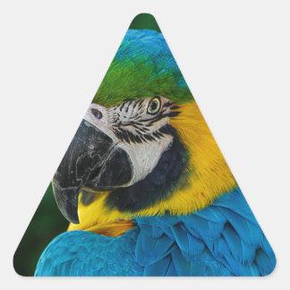 Ara Parrot Triangle Sticker