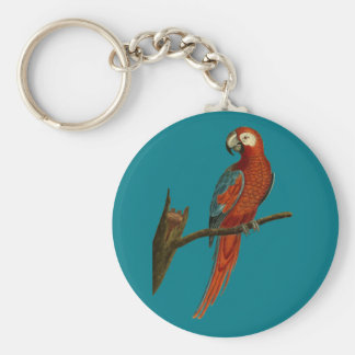 Ara red parrot keychain