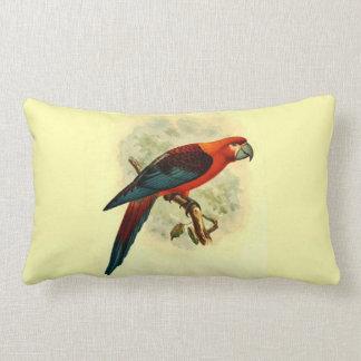Ara Tricolor Throw Pillow Lumbar