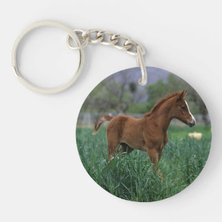 Arab Foal Standing Keychain