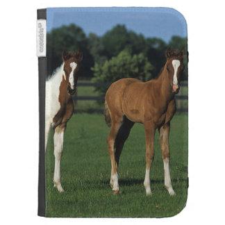 Arab Foals Standing in Grassy Field Kindle Folio Case