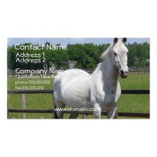Arab Horse Business Card