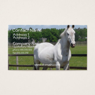 Arab Horse Business Card