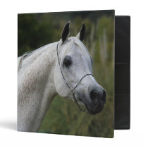 Arab Horse Headshot 1 Binder