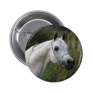Arab Horse Headshot 1 Button