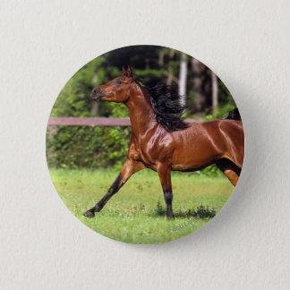 Arab Horse Running 2 Button