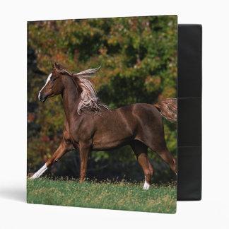 Arab Horse Running in Grassy Field Binder