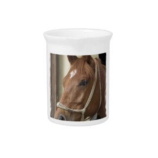 Arab Horses Pitcher