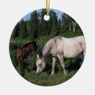 Arab Mare & Foal 2 Double-Sided Ceramic Round Christmas Ornament