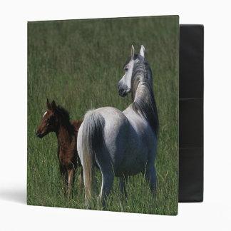 Arab Mare & Foal 3 Ring Binder