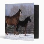 Arab Mare & Foal in Snow Binder