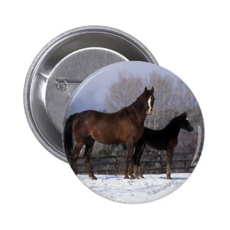 Arab Mare & Foal in Snow Pinback Button