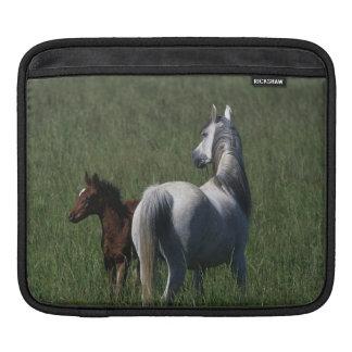 Arab Mare & Foal iPad Sleeve