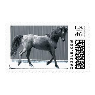 Arab Prance Stamps