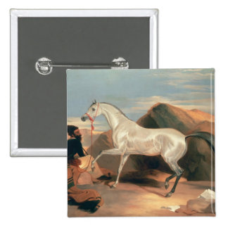 Arab Stallion Pinback Button