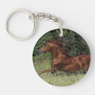 Arab Stallion Running in the Grass Keychain