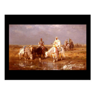 Árabes de Adolfo Schreyer que riegan sus caballos Postal