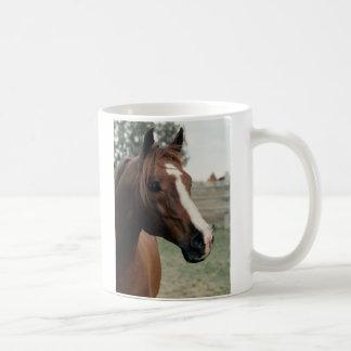 Arabian at Pasture Coffee Mug