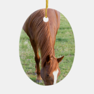 Arabian Brown Horse Front Standing Perfect Mane Ceramic Ornament