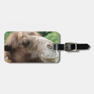 Arabian Camel Luggage Tag