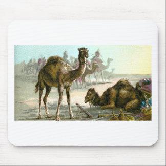 Arabian Camel Mouse Pad