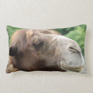 Arabian Camel Pillow