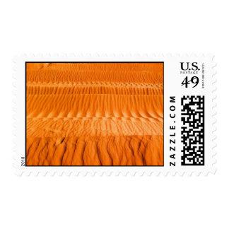 Arabian Desert Postage Stamp