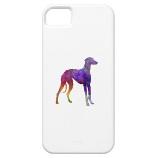 Arabian Greyhound in watercolor iPhone SE/5/5s Case