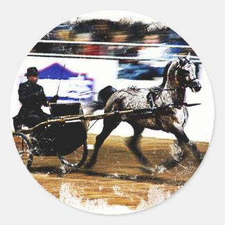 Arabian Harness Horse Classic Round Sticker