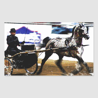 Arabian Harness Horse Rectangular Sticker