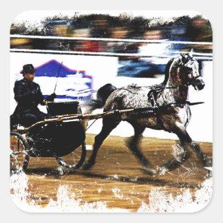 Arabian Harness Horse Square Sticker