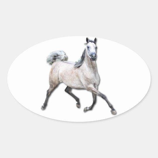 Arabian Horse - Alia Oval Sticker