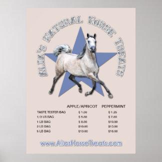 Arabian Horse - Alia's Natural Horse Treats Posters