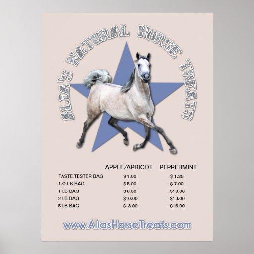 Arabian Horse - Alia's Natural Horse Treats Poster
