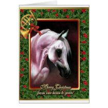 Arabian Horse Blank Christmas Card