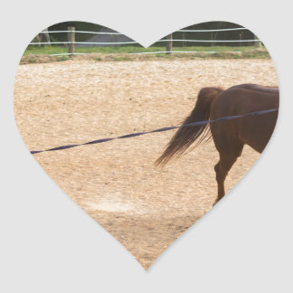 Arabian Horse Brown Running Around Training Heart Sticker