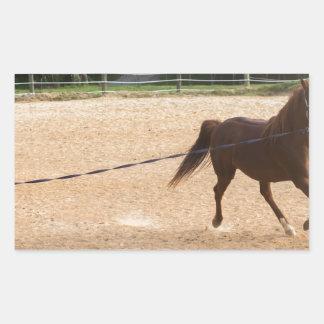 Arabian Horse Brown Running Around Training Rectangular Sticker