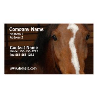 Arabian Horse Business Card