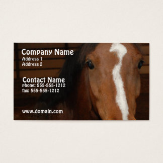 Arabian Horse Business Card