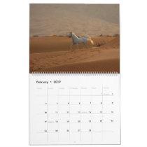 Arabian Horse Calendar 2019