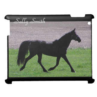 Arabian Horse Case For The iPad