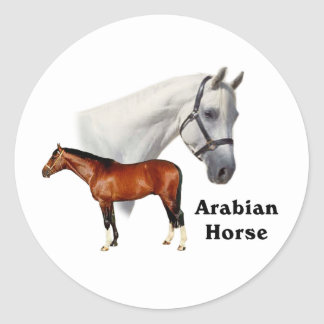 Arabian Horse Classic Round Sticker