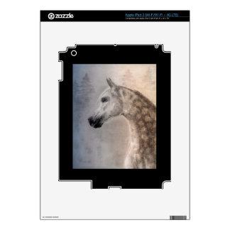 Arabian Horse iPad 3 Skin Template