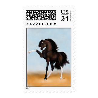 Arabian Horse Passion Brown Stamp